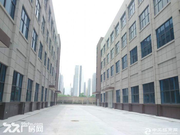 【独栋出售】,50年产权标准化厂房