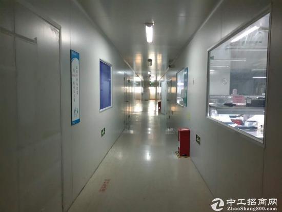 石岩高薪园新出楼上4000平带红本厂房出租-图5