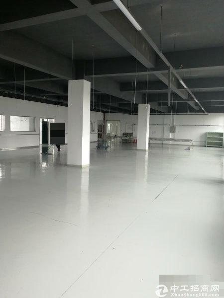 松江一房东104地块四楼1750平米厂房