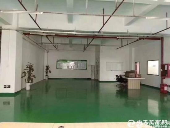 平湖华南城边上新出一楼1200平方原房东厂房招租