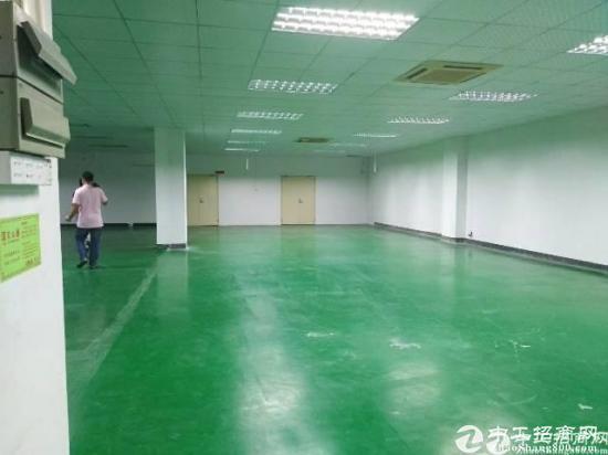 惠州沙田花园式红本独院厂房楼上1180平出租