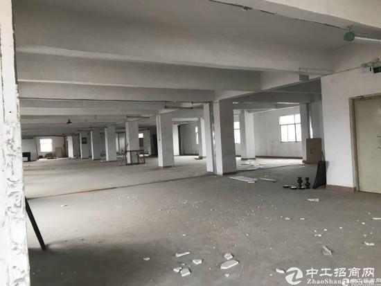 龙东新出3楼1200平方米厂房出租可分租