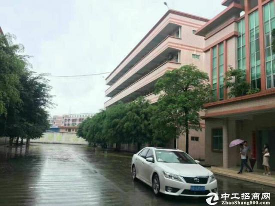 坪地原房东厂房800平米出租,装修办公室