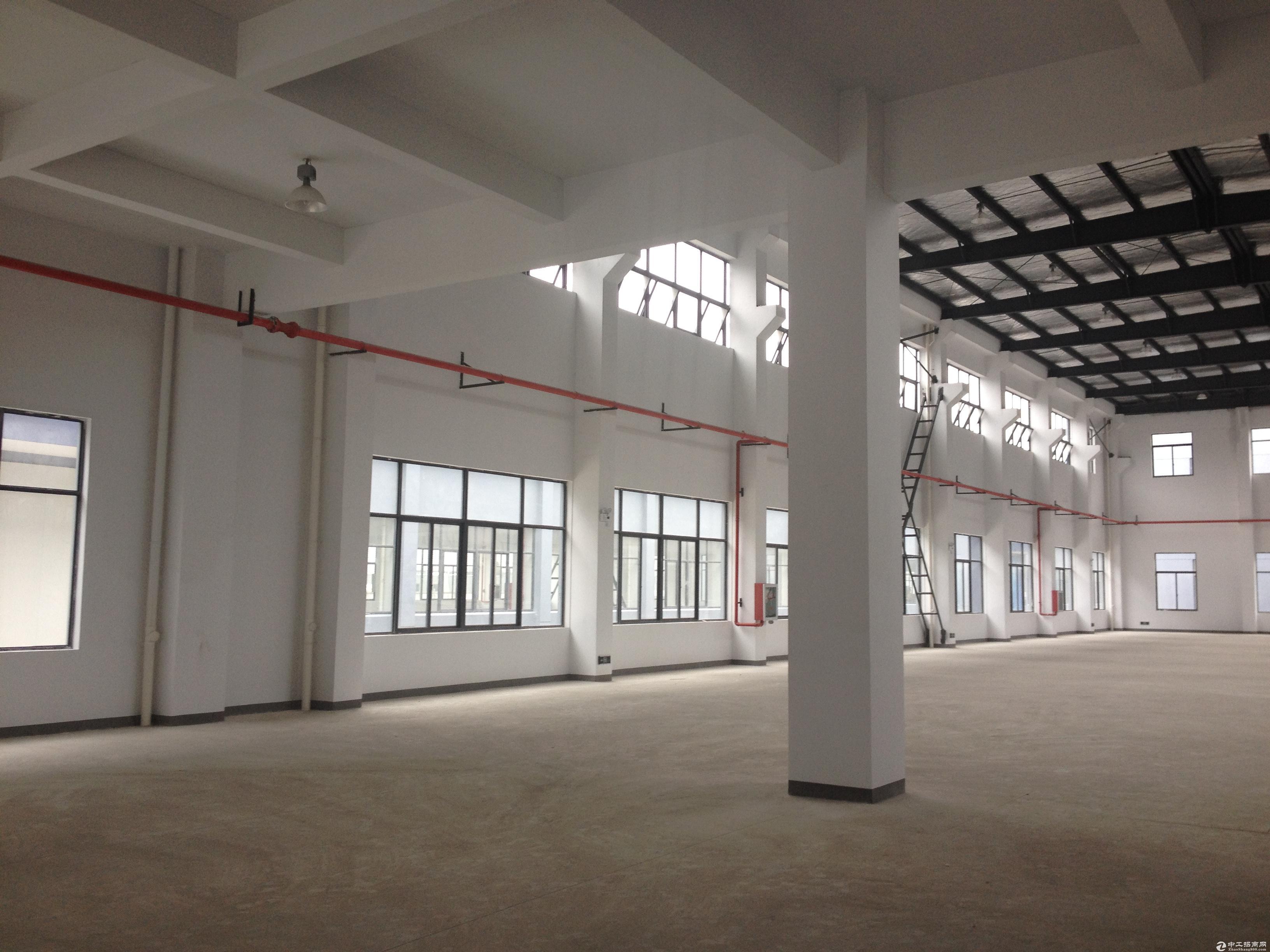 莘庄九亭旁 开发商直售标准104独栋全新厂房