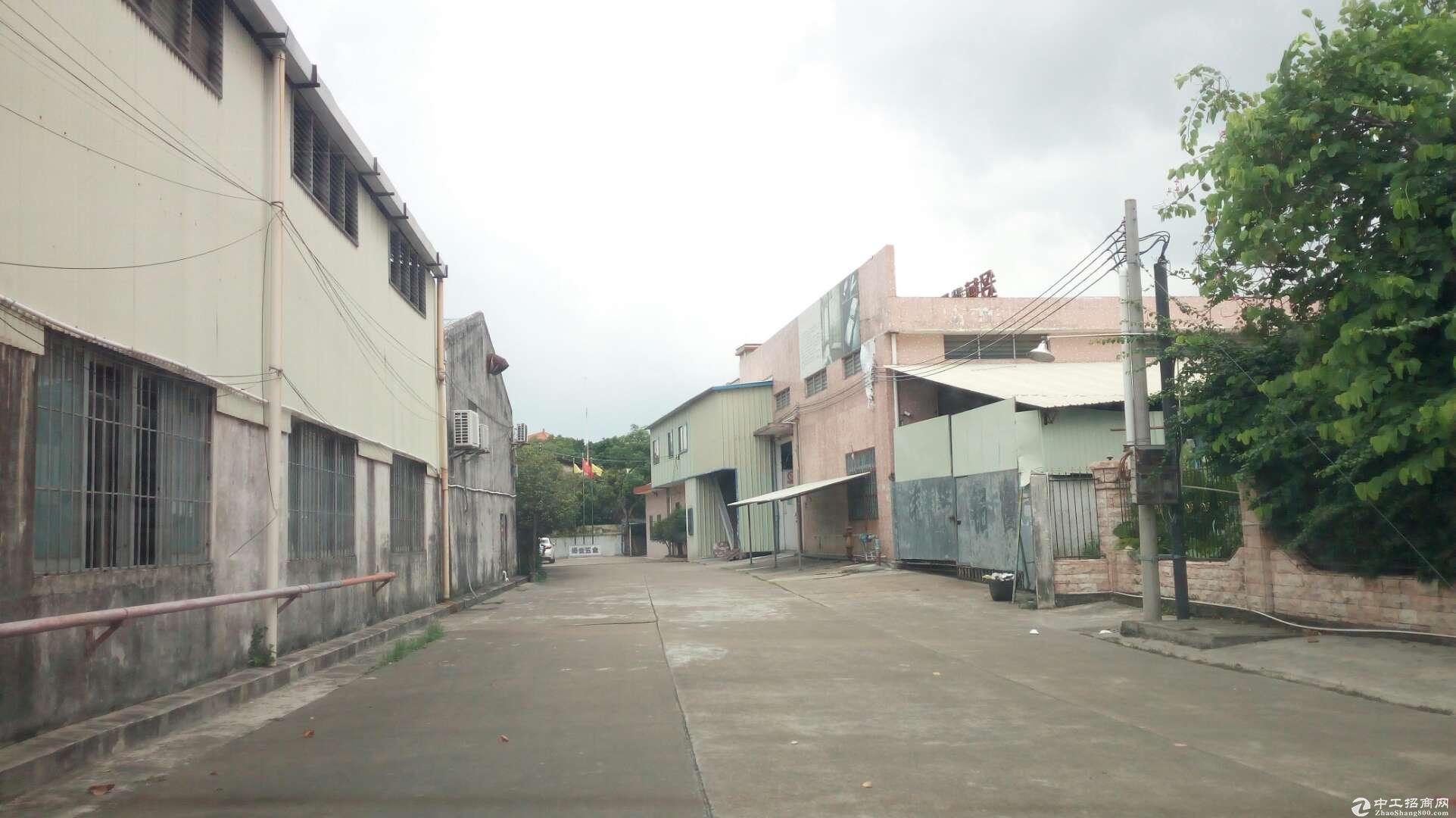 港口 一楼厂房出租 层高7米 有院子 空地 铁皮顶;采光好 厂房共有三个车间;共1200方-图3