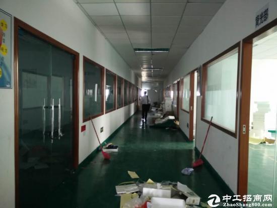 西丽关口新出独院1/4层6000平米厂房出租