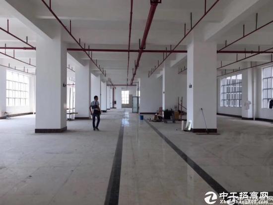 龙岗南联新出标准厂房3600平方-图4