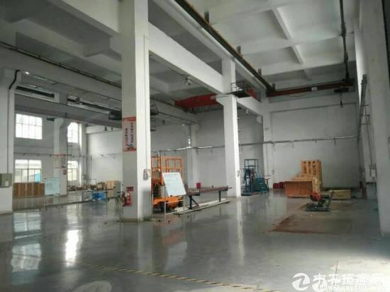 坪山新出一楼1450平米厂房出租-图4