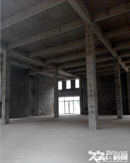 大产权厂房出售 有房本 可贷款 可环评