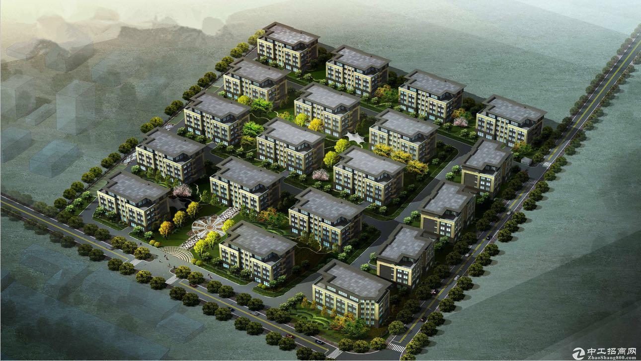 松江104区块,花园式办公大楼,独立产权,可按揭