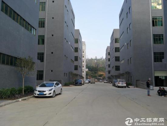 S龙岗新出800平方,原房东价钱便宜-图3