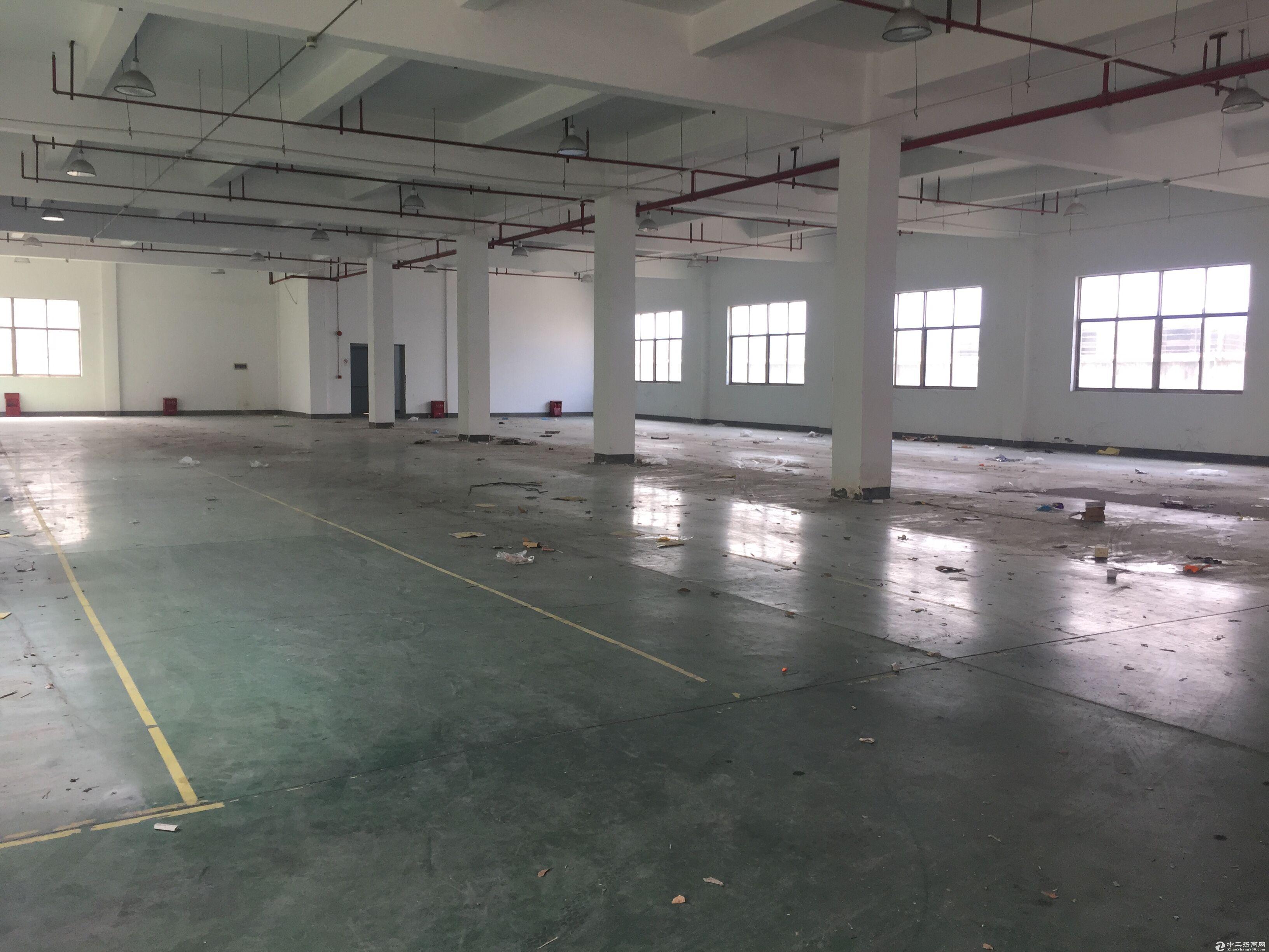 松江单层400平米厂房出租层高平米