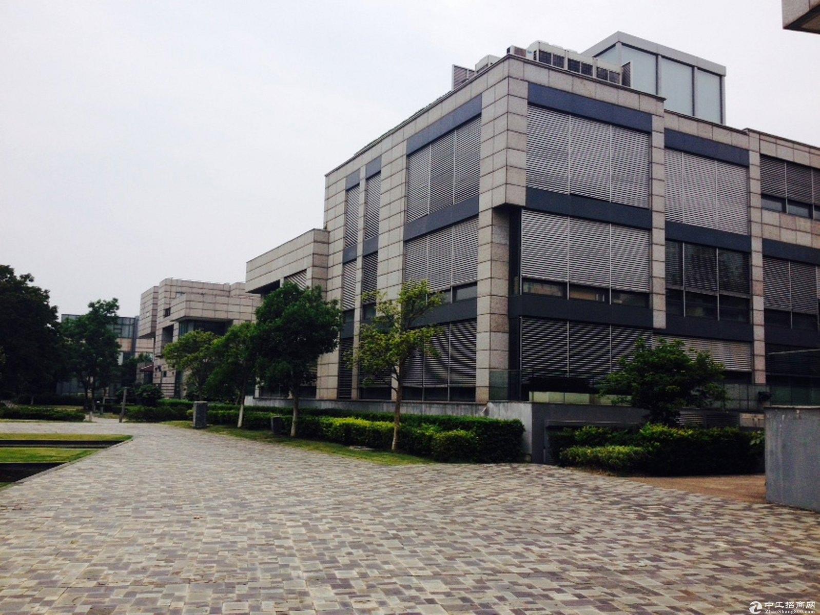 宝山真陈路独栋1640平带电梯办公研发贸易小加工大楼诚意售