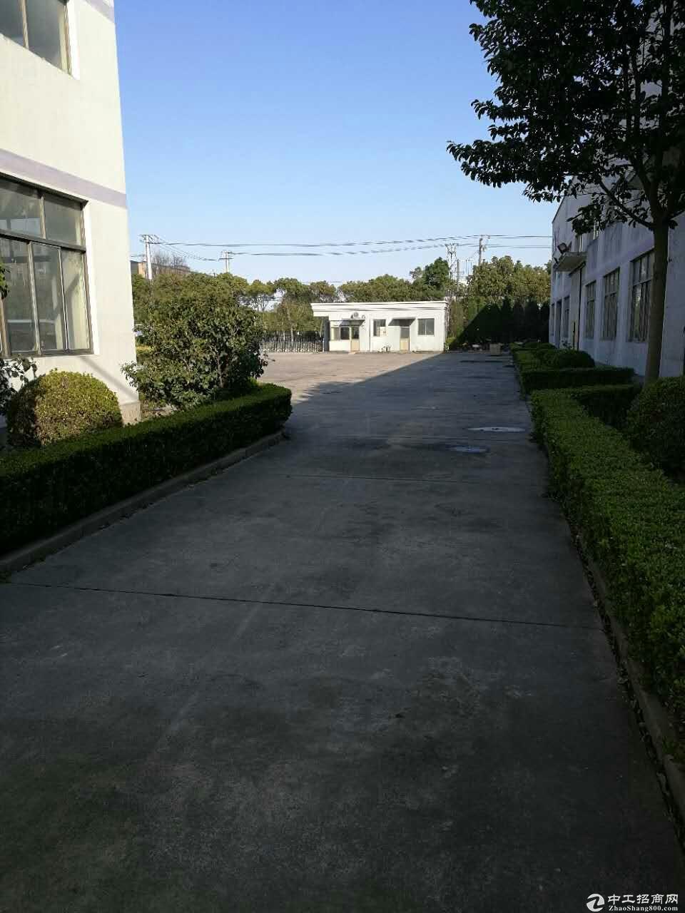 松江单层104地块单层厂房低价1元出租
