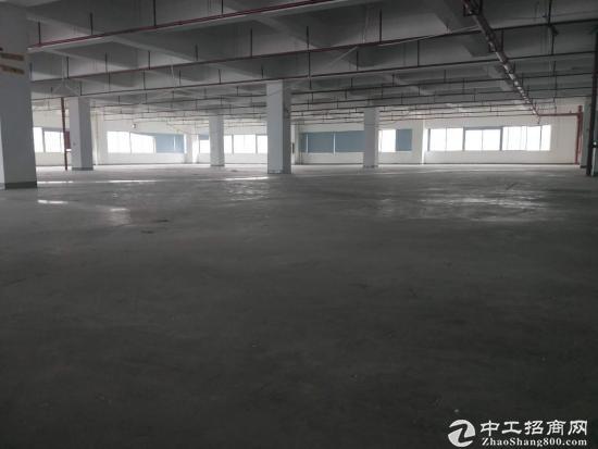 广州增城新糖主干道边上独院厂房二楼2500平方单层面积