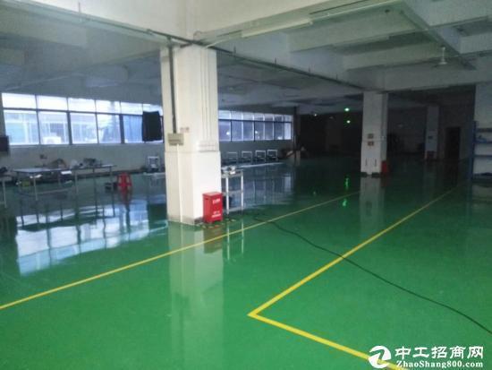 龙岗新生 楼上豪华装修厂房出租1400平米