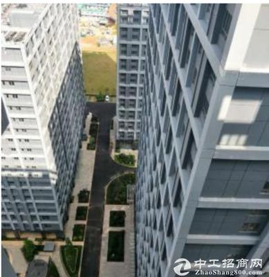 [坪山厂房]深圳66年产权甲 级纯写字楼出售,面积大小可分-图3