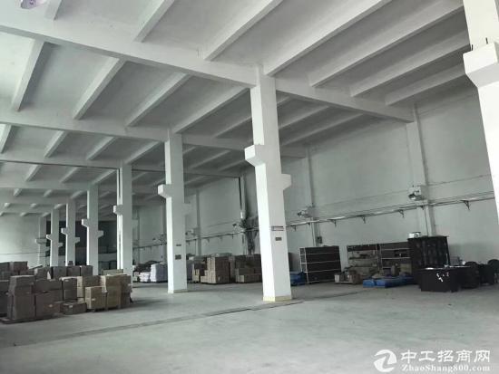 广州增城新塘区标准工业区一楼1300平方招租