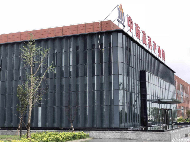 中南高科,【独栋出售】,50年产权标准化厂房