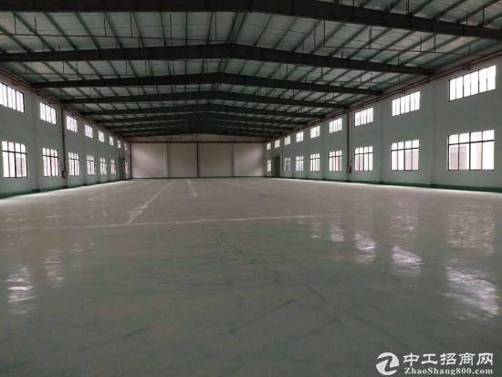 广州新塘中心区独院钢构3900平方招租