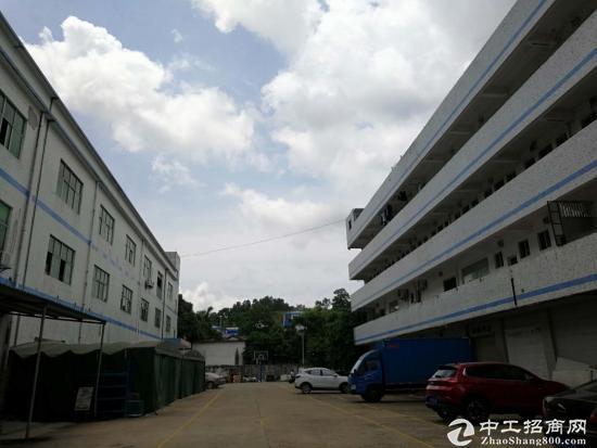 坪山 江岭精品小独院2800平带办公室 红本-图2