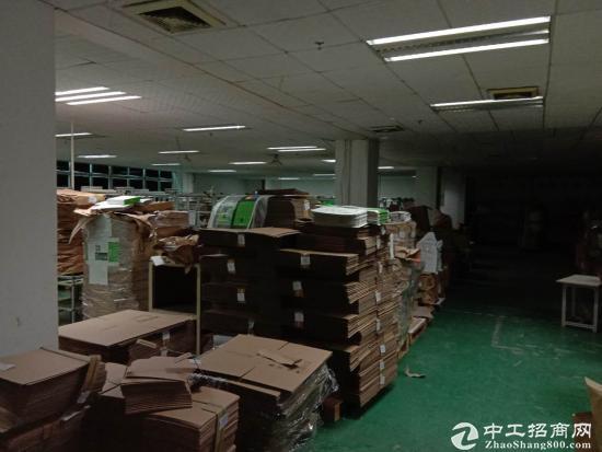 坪山 江岭精品小独院2800平带办公室 红本-图5