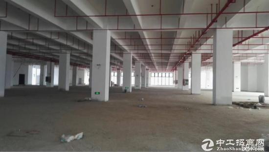 坑梓新出标准一楼厂房3000平方米