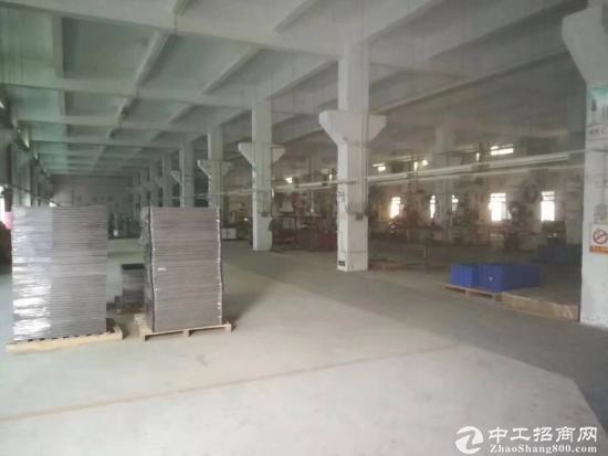 广州增城新塘标准工业区一楼1000平方招租