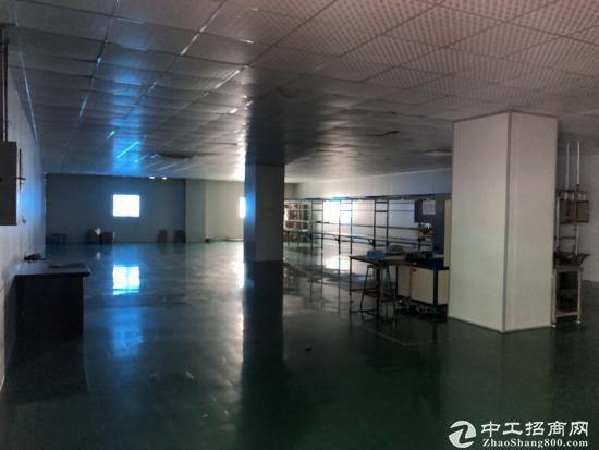 横岗六约花园式独院厂房出租精装办公室无尘车间-图7