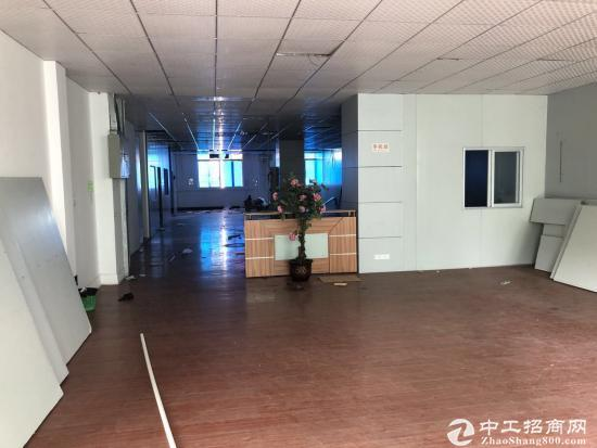 横岗六约花园式独院厂房出租精装办公室无尘车间-图5