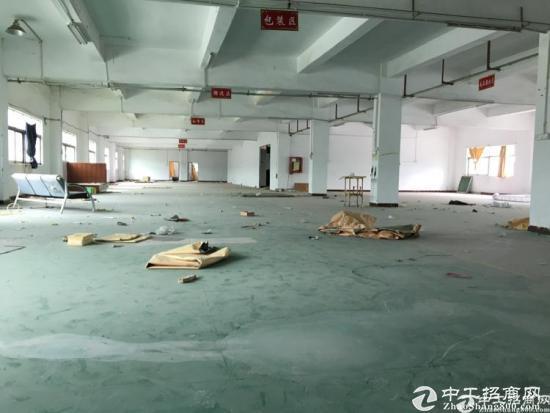 坪山石井工业区新出二楼1350平米标准厂房出租