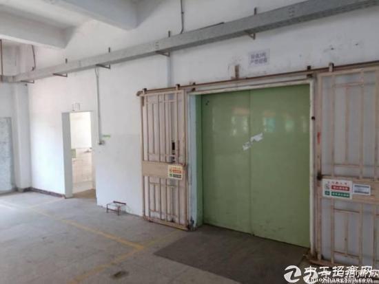 平湖广场附近独门独院厂房3800平方急租