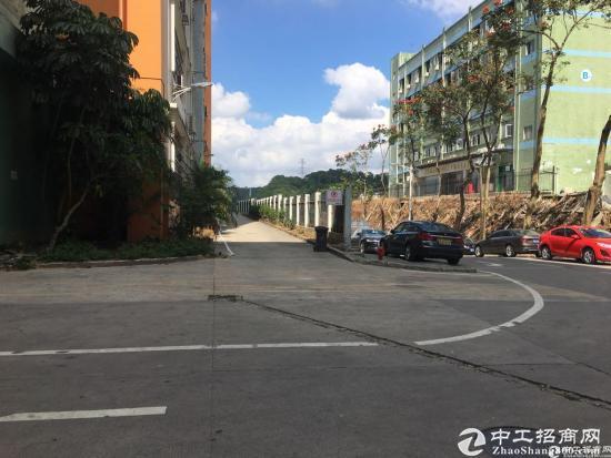 坂田天安云谷附近新出楼上带卸货平台1900平方低