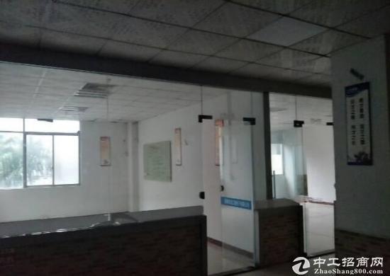 坪山碧岭大型工业园新出楼上590平带办公室急租-图4