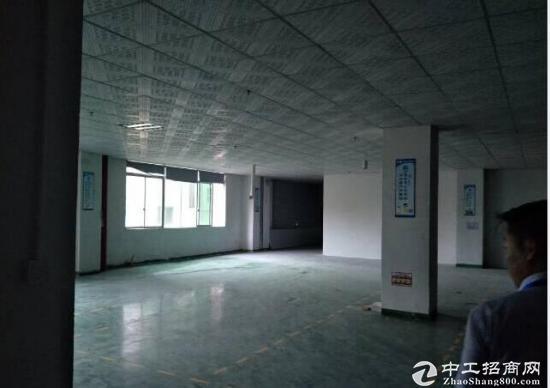 坪山碧岭大型工业园新出楼上590平带办公室急租-图3