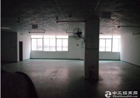 坪山碧岭大型工业园新出楼上590平带办公室急租