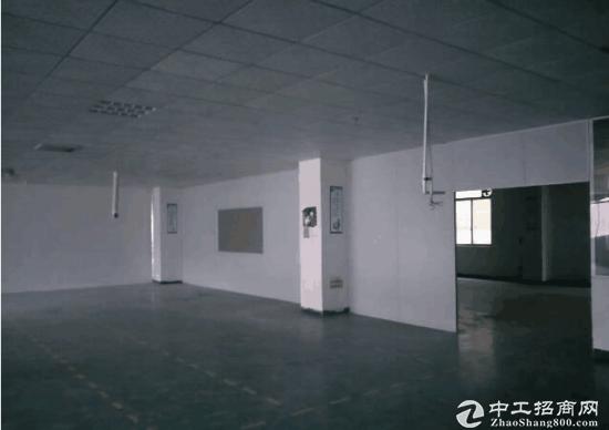 坪山碧岭大型工业园新出楼上590平带办公室急租-图2
