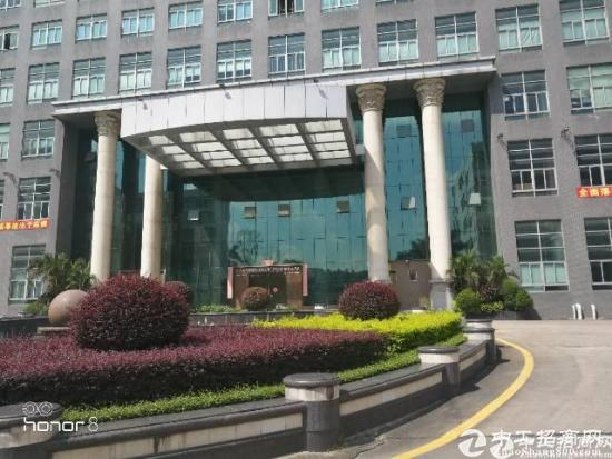 坂田总部大厦1楼办公室招租