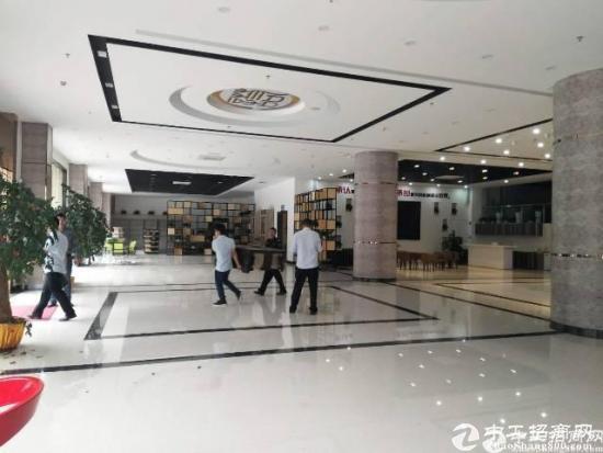 坂田地铁站新出带精装2718平米一楼-图3