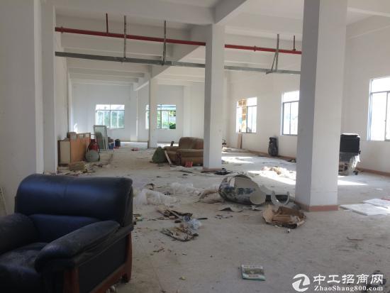 坪山 石井花园式园区内新出标准 一楼3000平分租-图4