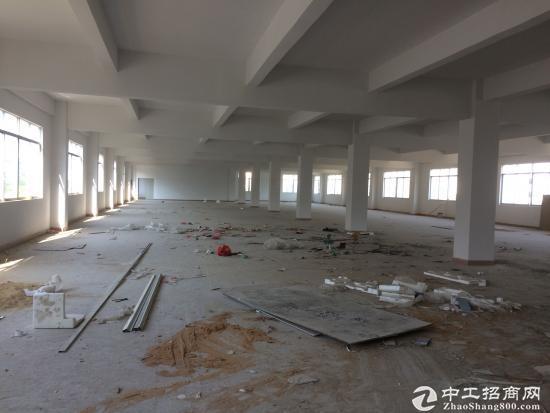 坪山 石井花园式园区内新出标准 一楼3000平分租-图5