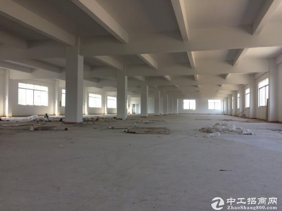 坪山 石井花园式园区内新出标准 一楼3000平分租