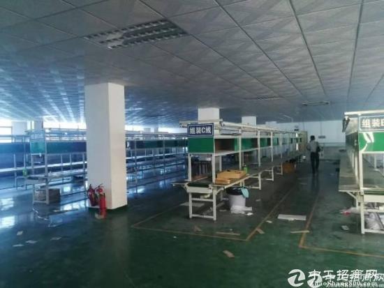 沙田镇全新地坪漆装修经典独院厂房, 厂房3层,面积4600平方