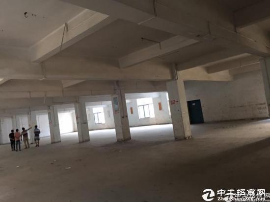 新空出原房东不限行业标准厂房分租2700平方可办环评