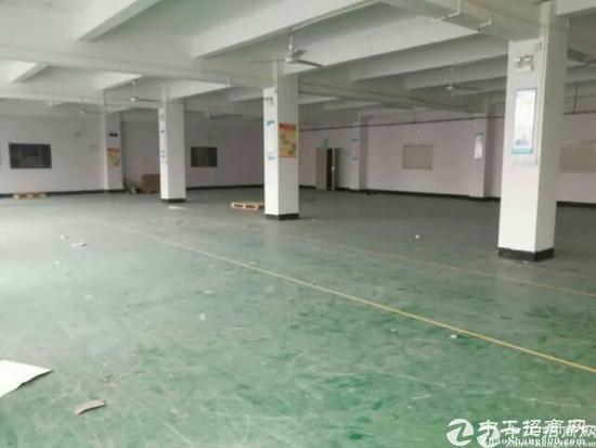 横岗四联原房东厂房700平出租,面积实在