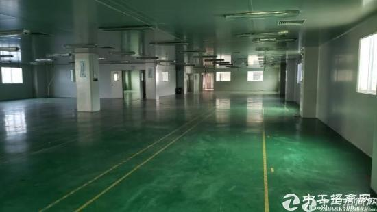 厚街镇新出一楼1200平米厂房低价出租  带地平漆 带独立办公室