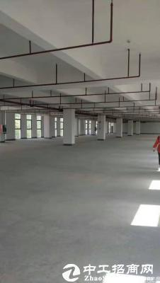 深圳上市公司全新厂房5000平方14层实际面积