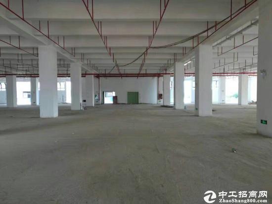 龙岗宝龙 医疗产业园厂房 大小面积分租