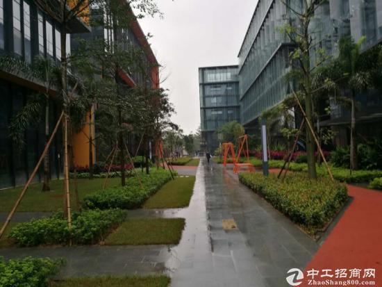 龙岗高新产业园独栋办公研发中心企业总部 优选