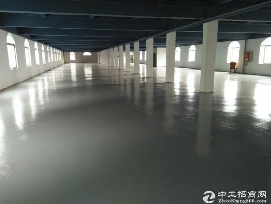 横岗安良工业区全新翻新厂房1600平方出租